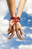 Hands tied with ribbon Royalty Free Stock Images