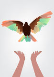Hands to let bird flying go to freedom life | abstract illustration Royalty Free Stock Image