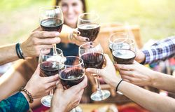 Hands toasting red wine and friends having fun cheering at winetasting experience - Young people enjoying harvest time together. At farmhouse vineyard stock images