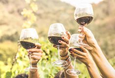 Hands toasting red wine glass and friends having fun cheering at
