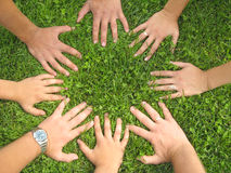 Hands together. Family hands together on the green grass Stock Photography