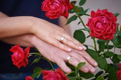 Hands together with wedding rings on red roses Royalty Free Stock Photo