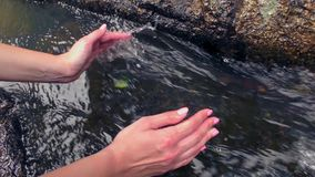 Hands in Transparent Clear Water From Natural Well. Hands Holding Transparent Clear Water From Natural Well stock video footage