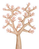 Hands tree. Tree made of hands isolated over white background Stock Images