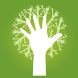 Hands tree. On olive green background Royalty Free Stock Photography