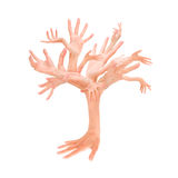 Hands Tree. Tree made with human hands stock photo
