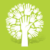 Hands of tree on green Royalty Free Stock Image