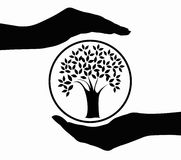 Hands and tree icon Royalty Free Stock Photos