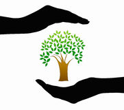 Hands and tree icon Royalty Free Stock Image