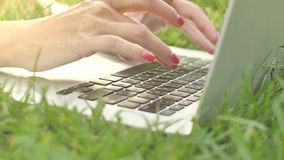 Hands typing on laptop keypad on green grass. Young woman typing on laptop keyboard at nature. 4K 422 10 bit stock video