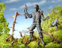 Ants capture terrorist - toy soldier, ant tales Stock Photo