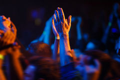 Hands up on a concert Stock Photography