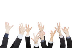 Hands up group of business people Royalty Free Stock Image