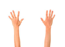 Hands Up Isolated Royalty Free Stock Photo