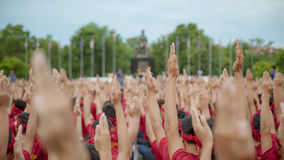 Hands up. Many people hands up or show hands Royalty Free Stock Photography
