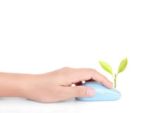 Hands using  mouse with  plant Stock Photos