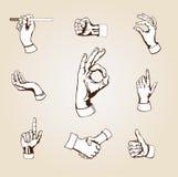 hands vektorn Arkivbild