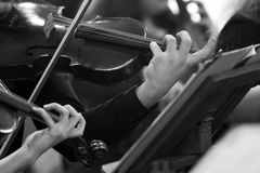 Hands violinists. In black and white Stock Photography