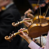 Hands violinists Stock Photos