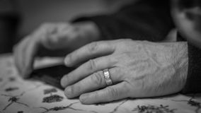 hands vishet royaltyfri foto