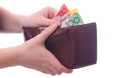 Hands with wallet Stock Image