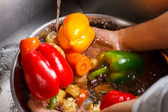 Hands Wash Vegetables In Basin. Royalty Free Stock Image