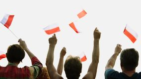 Hands waving with flags of Poland. Patriotic Polish people raising flags outdoors, rear view. Crowd of people support Poland stock video footage