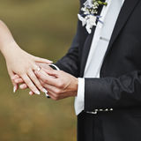 Hands of wedding couple putting golden rings Royalty Free Stock Photography