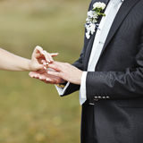 Hands of wedding couple putting golden rings Stock Photo