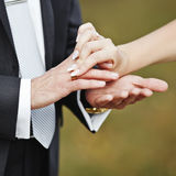 Hands of wedding couple putting golden rings Stock Photography