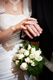 Hands with wedding gold rings Royalty Free Stock Photos