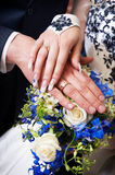 Hands with wedding gold rings Royalty Free Stock Image