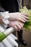 Hands with wedding gold rings Royalty Free Stock Photography