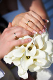 Hands with wedding gold rings happy newlyweds Stock Images