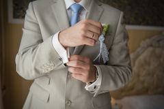 Hands of wedding groom getting ready in suit Royalty Free Stock Images