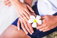 Hands with wedding ring and Frangipani flowers or Plumeria Royalty Free Stock Photography