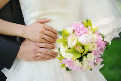 Hands and wedding rings Royalty Free Stock Images