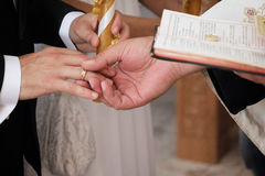 Hands and wedding rings Royalty Free Stock Photography
