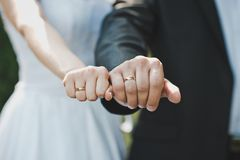 Hands with wedding rings 1619. Stock Photos