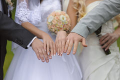Hands with wedding rings two pairs Royalty Free Stock Images