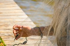 Hands which Collect Small Fish Captured by a Fishnet. On Blur Background stock photos