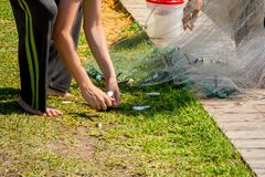 Hands which Collect Small Fish Captured by a Fishnet. On Blur Background royalty free stock image