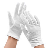 Hands in white gloves royalty free stock photo