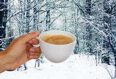 Hands with winter coffee Stock Photo