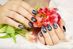 Free Hands With Manicured Nails With Cat Eye Design Stock Photography - 114620212