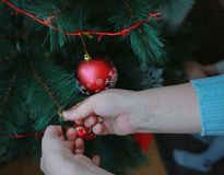 Hands of a woman decorating a Christmas tree Stock Images