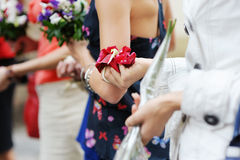 Hands of a woman full of rose petals Royalty Free Stock Image