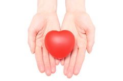 Hands of woman holding red heart. White background Royalty Free Stock Photo