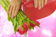 Hands of woman with pink and white manicured on nails holding beautiful tulips, red bag stock photo