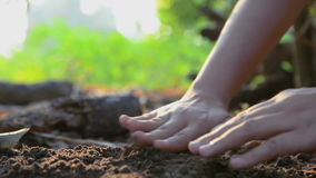 Hands of woman planting the seeds on earth ground and watered with nature ambient sound stock video footage